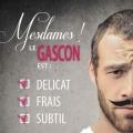 Publicité - Vins des Côtes de Gascogne
